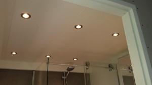 Badkamer citroengras houten kunststof panelen plafond met